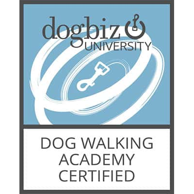 Dog Walking Academy